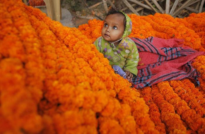 Фотографии индийского фестиваля Дивали 2012 года