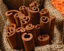 cinnamon1 (250x199, 30Kb)