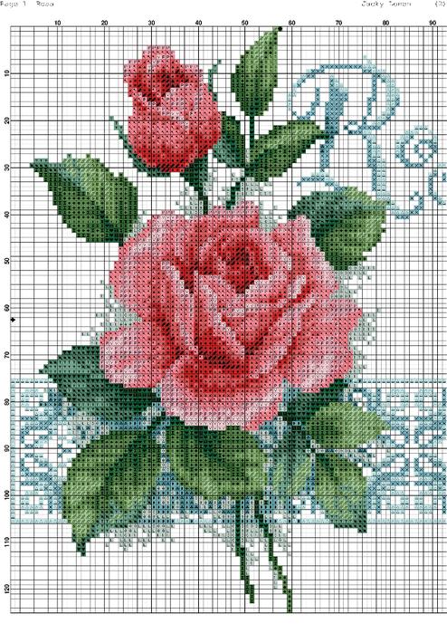Rosa-001 (494x700, 498Kb)