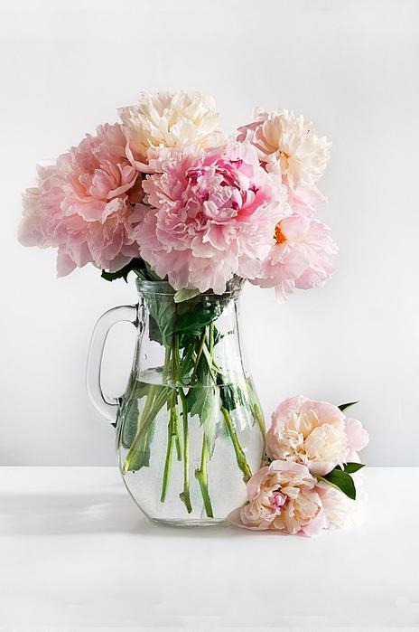 цветы в вазе 5 (464x700, 242Kb)