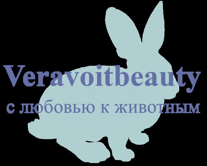 1440847553_krolik_v_blog (700x563, 71Kb)