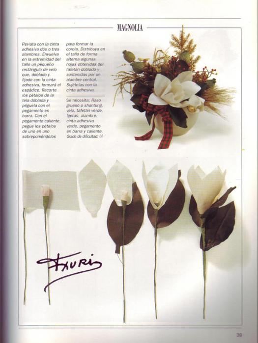 FLORES DE TELA PAG.39 (525x700, 283Kb)