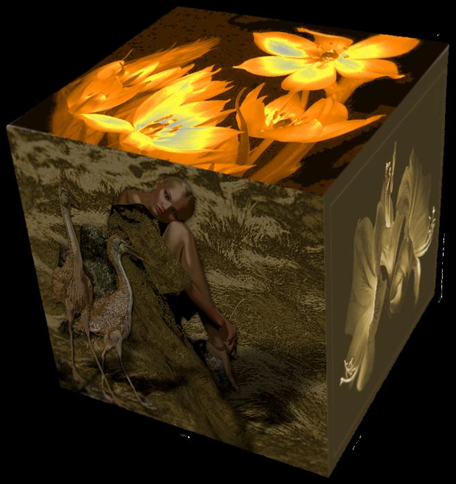 коробочка (658x700, 568Kb)