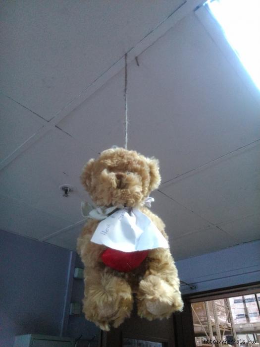 медведь повесился/4555640_DSC_3465_1_1_ (525x700, 246Kb)