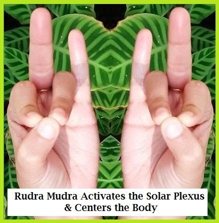Rudra-mudra-2-41 (440x447, 82Kb)