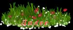 4199468_119799932_43__2_ (150x62, 19Kb)