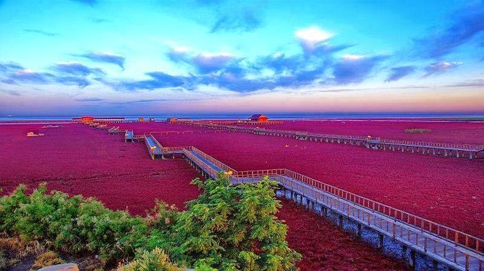 красный пляж (700x392, 352Kb)