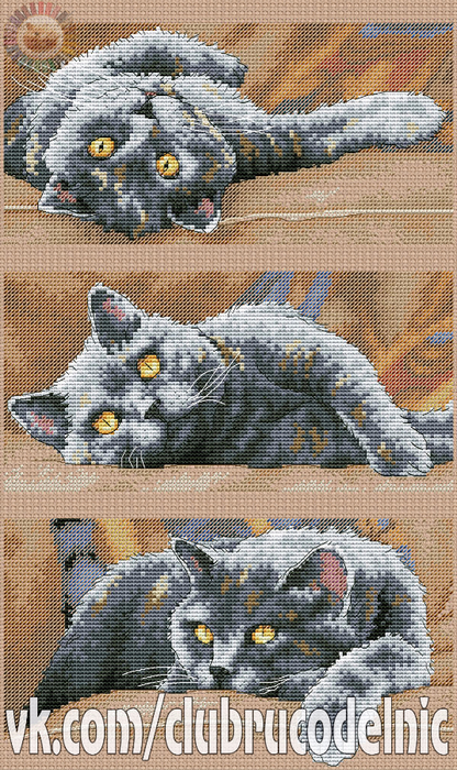 Max the Cat (416x700, 518Kb)