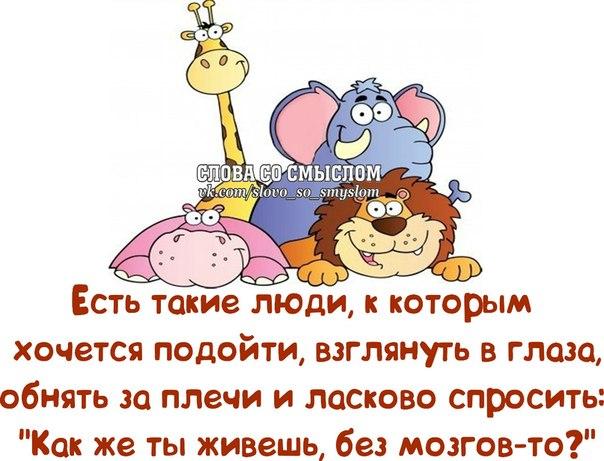 1382582410_frazochki-15 (604x461, 253Kb)