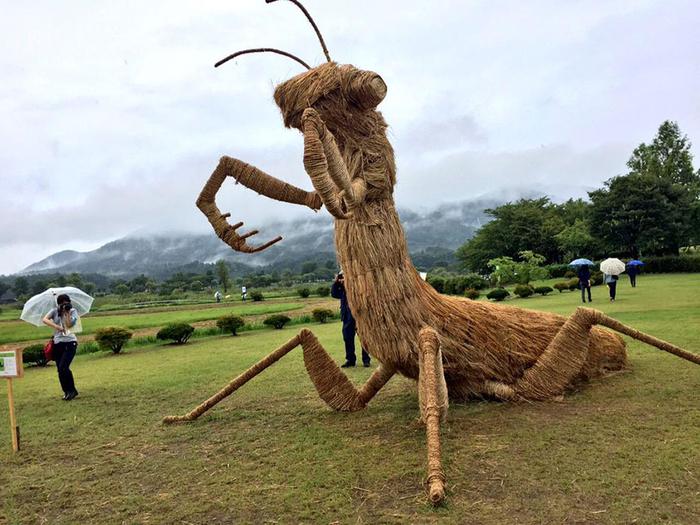 фестиваль соломенных скульптур в японии фото 9 (700x525, 390Kb)
