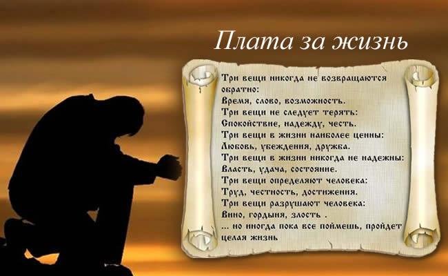3906024_plata_za_zhizn (650x400, 50Kb)
