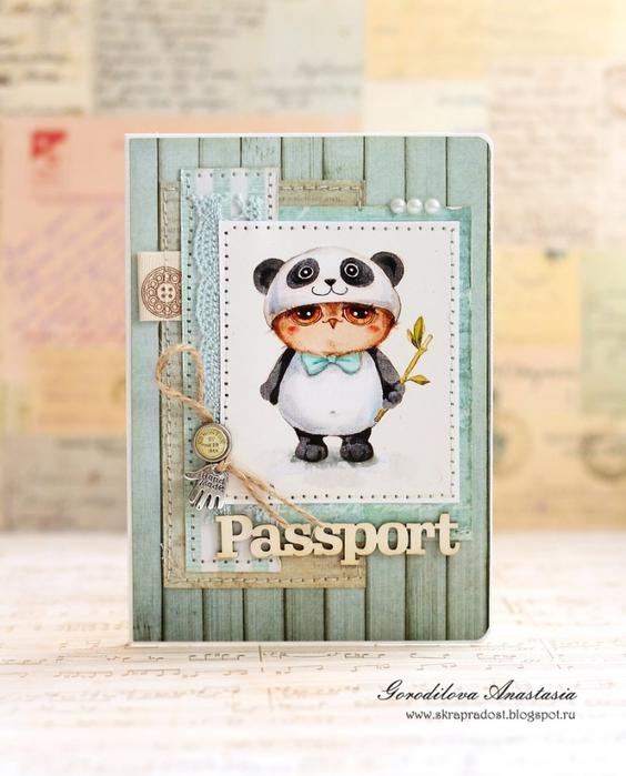 Обложки на паспорт (564x700, 232Kb)