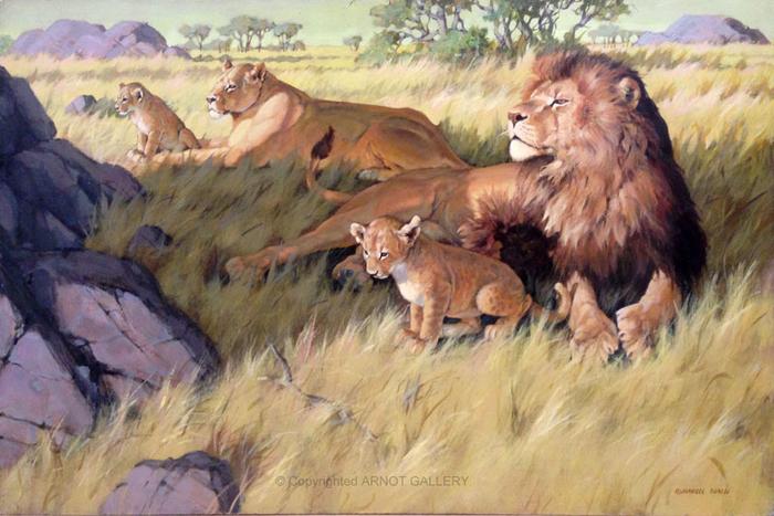 BORDEI-MARC-Lions-24x36-Panel (700x467, 392Kb)