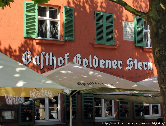 Goldener_Stern_wz (700x533, 287Kb)