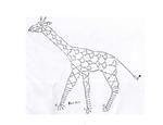 Превью жираф схема (700x538, 121Kb)