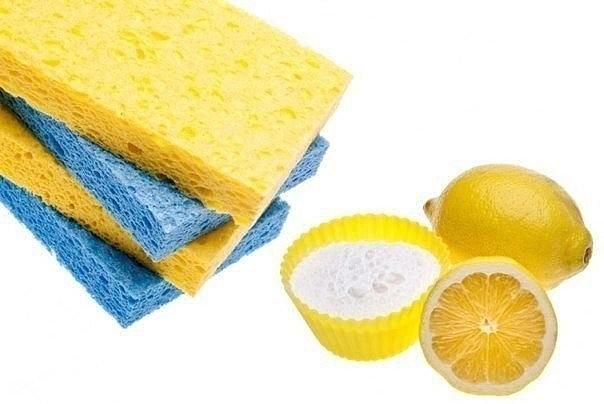 image (15)лимон (604x404, 158Kb)
