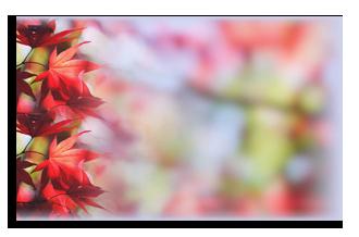 красные-листья-о (330x218, 99Kb)