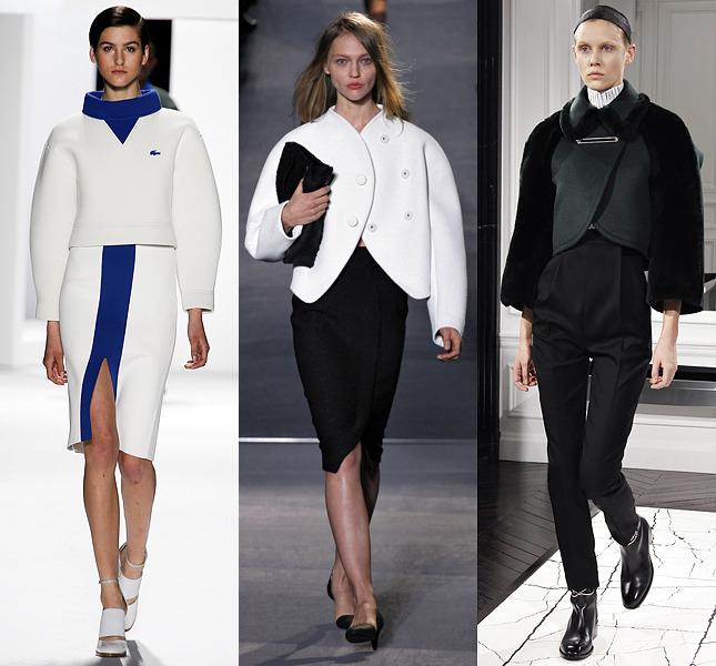 Мода осень-зима 2015 (9) (645x600, 265Kb)