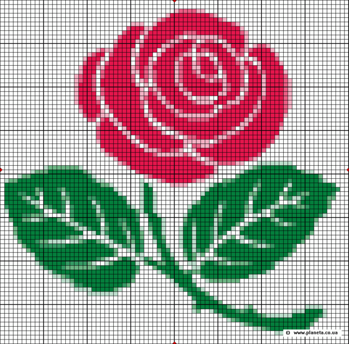 Шаблон для вышивки цветов крестом