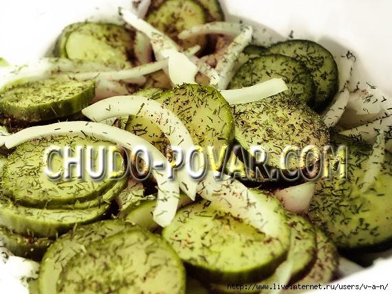salat-iz-ogurcov-na-zimu-zimnij-korol-recept-salata-s-foto (570x428, 252Kb)