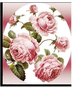 розы-оо (253x300, 140Kb)