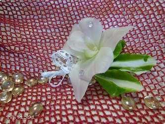 Мастер-класс по лепке из холодного фарфора: Орхидея дендробиум/3734205_0 (333x250, 20Kb)
