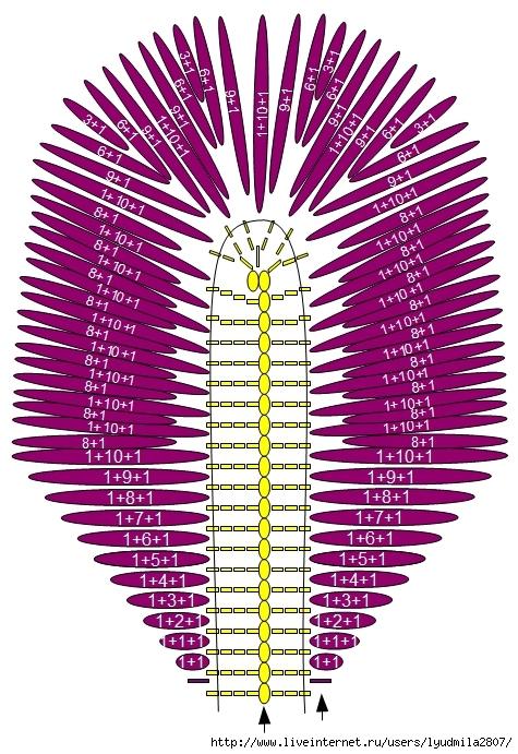 iris01 (475x691, 324Kb)