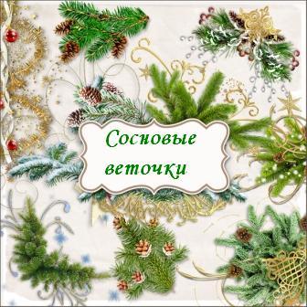sosnovye-vetochki (336x336, 33Kb)