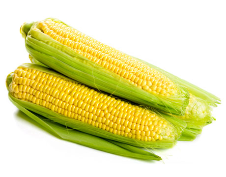 sweet-corn-clean15jpg-lg (460x360, 59Kb)