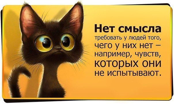 http://img1.liveinternet.ru/images/attach/c/7/94/206/94206391_872759_Kartinka_so_smislom_1.jpg