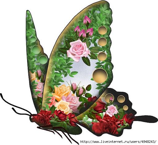 089_Butterflies_V~RoseRainbowButterfly (512x472, 162Kb)
