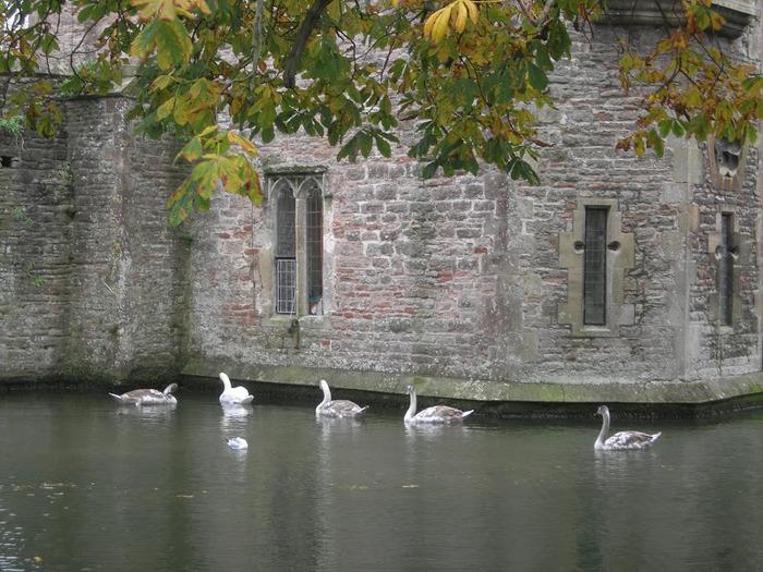 """Собор в Уэльсе - """"самый поэтический из английских Соборов"""" -часть 2. 86572"""