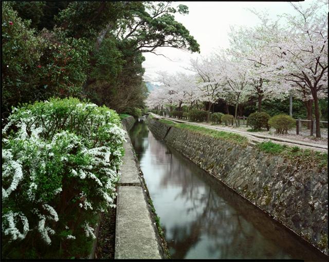 японский сад9 (640x510, 350Kb)