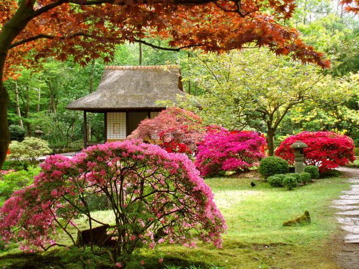 японский сад3 (700x525, 116Kb)