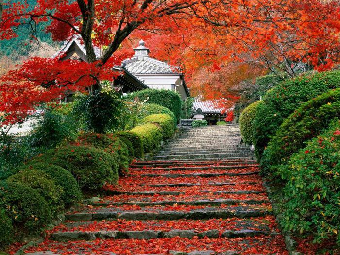 японский сад5 (700x525, 121Kb)
