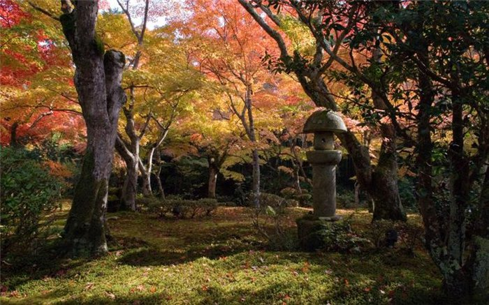 японский сад7 (700x437, 104Kb)