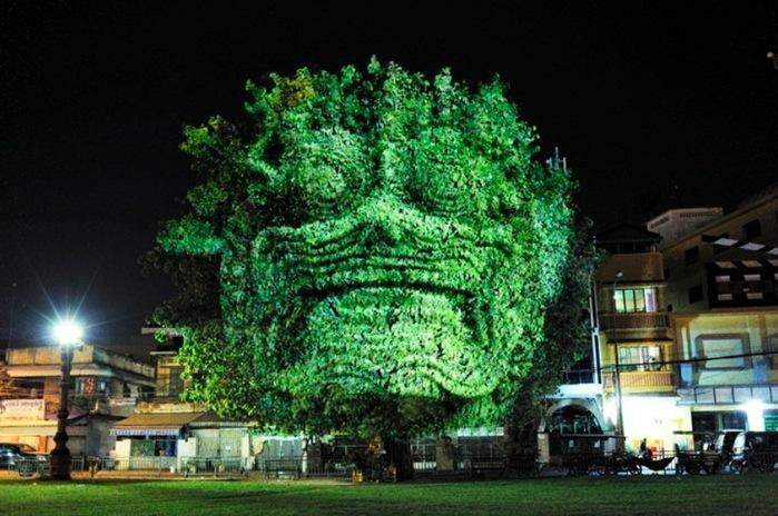 Световая инсталляция 'Деревья Камбоджи'