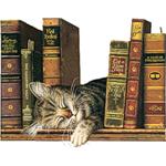 книги 2 (150x150, 40Kb)