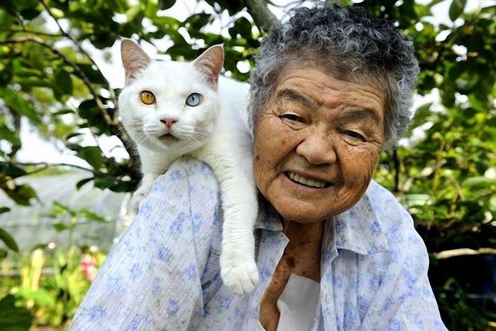 бабушка и кошка 7 (700x466, 252Kb)