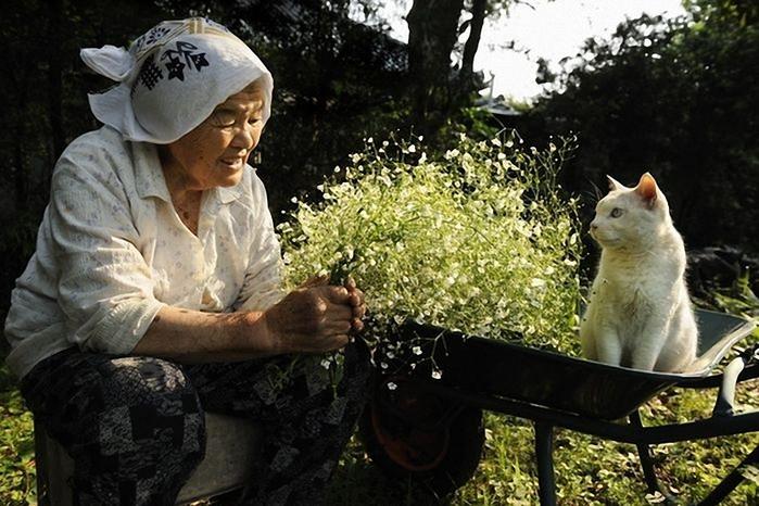бабушка и кошка 9 (700x466, 256Kb)