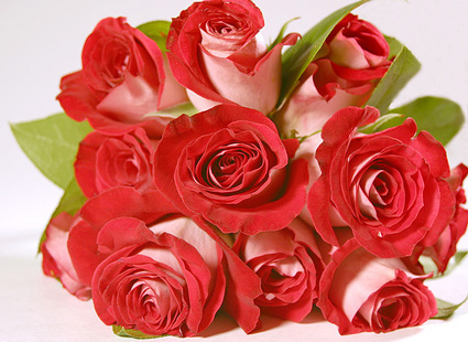 маленький букет роз (425x310, 89Kb)