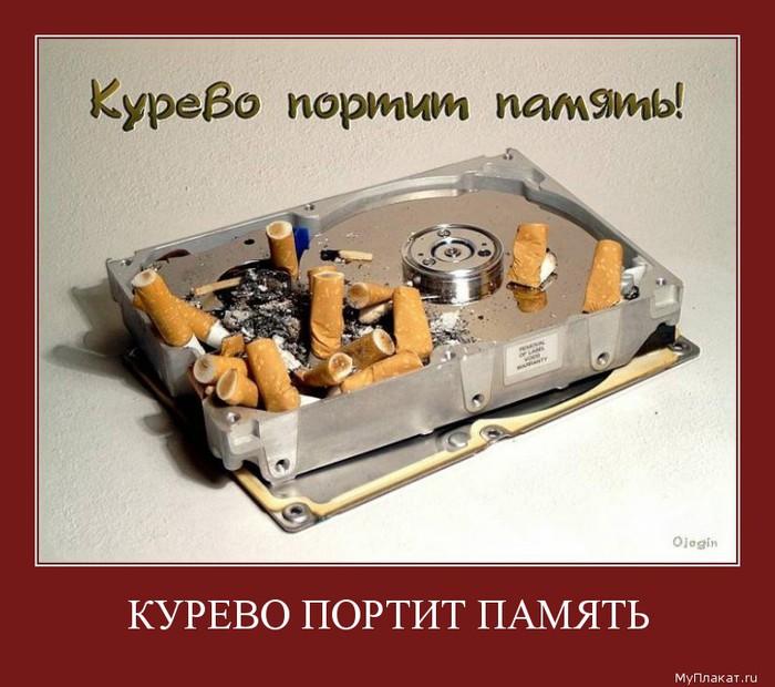 1572-kurevo_portit_pamiati (700x620, 98Kb)