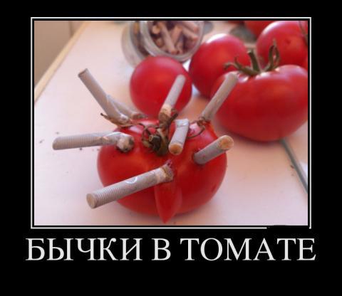 46160409_byichki-v-tomate (480x416, 22Kb)
