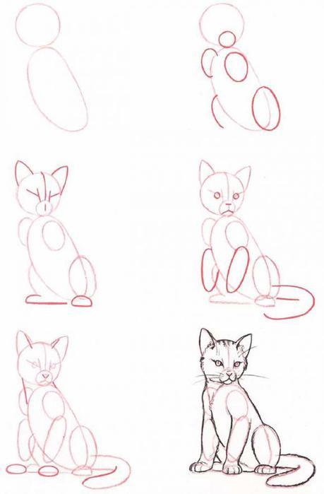 Как рисовать котов или кошек
