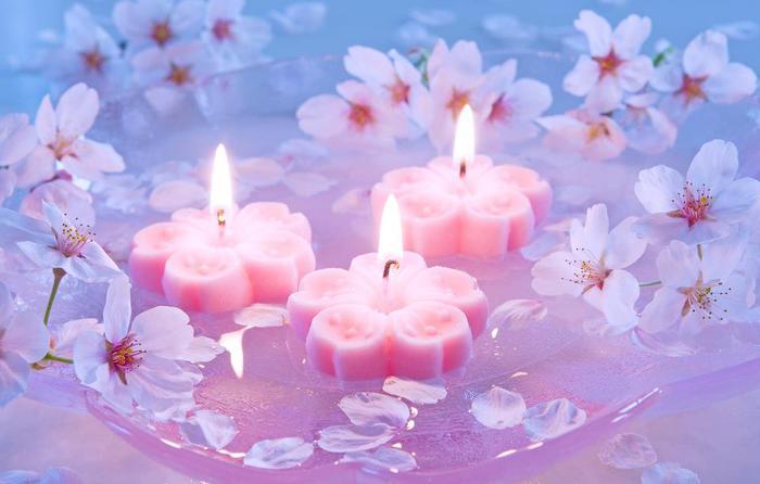 светлые цветы фото
