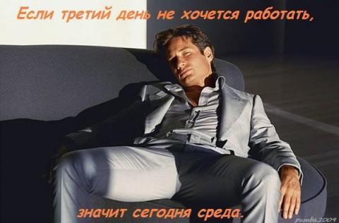 СРЕДА (480x316, 35Kb)