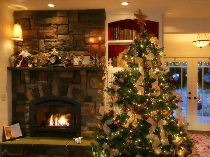 inspirational-living-room-with-decorated-christmas-tree (700x525, 293Kb)