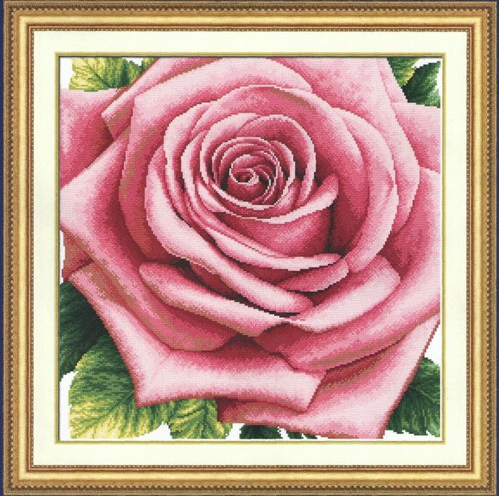 Роза0001a (700x695, 463Kb)