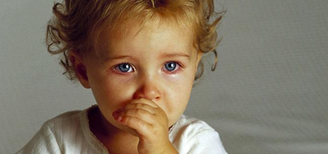 http://img1.liveinternet.ru/images/attach/c/7/94/420/94420077_cf155512b7a8e2a0c23ed15789f2cd98.jpg
