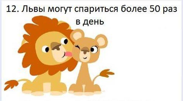 fakt_120 (600x334, 22Kb)